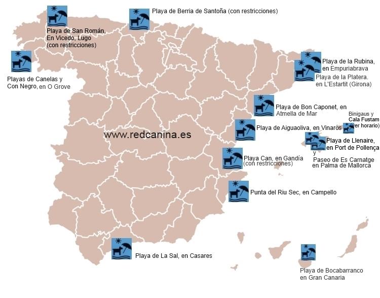 Playas para perros en España en 2013