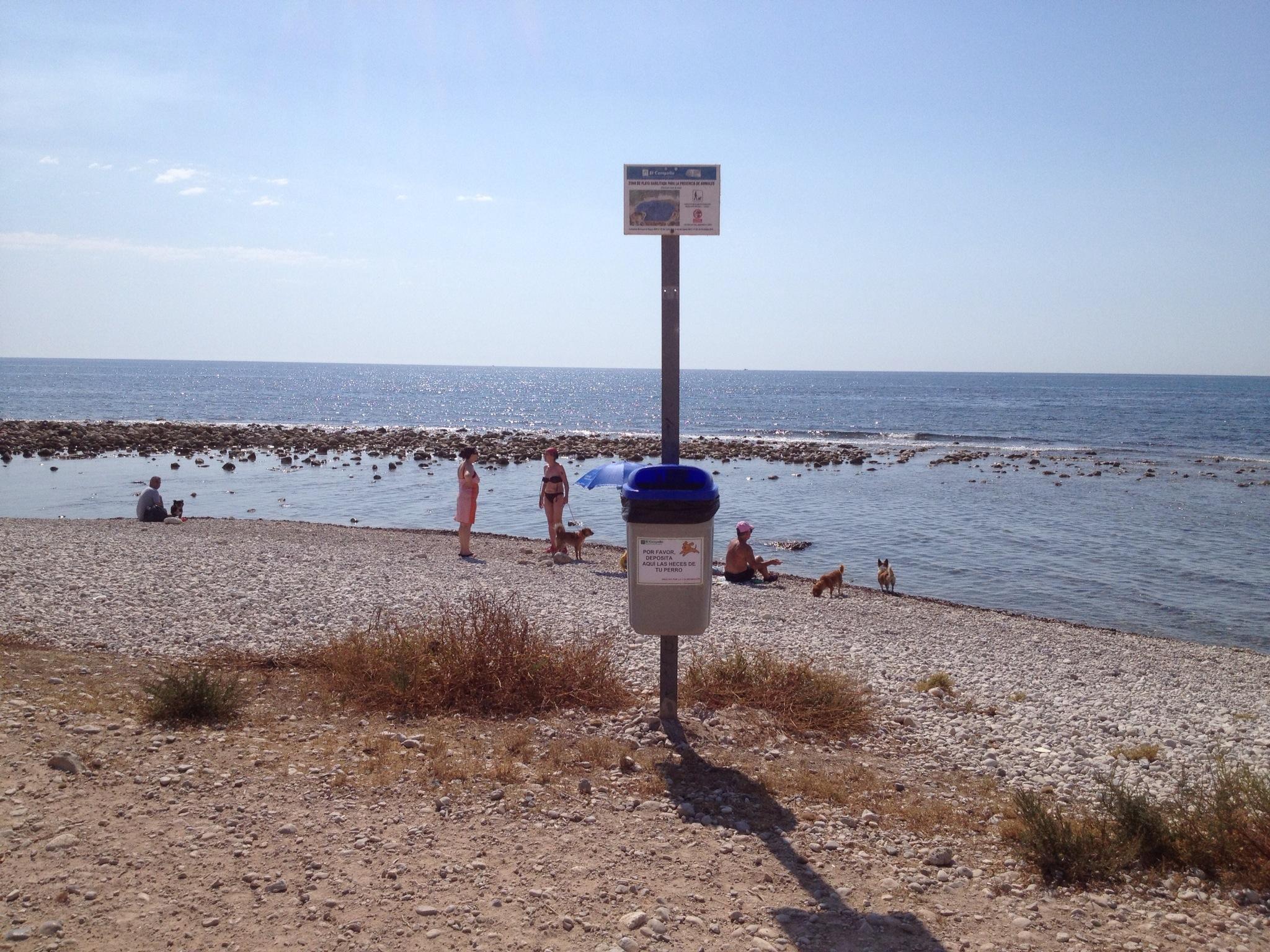 Playa para perros en Campello 9