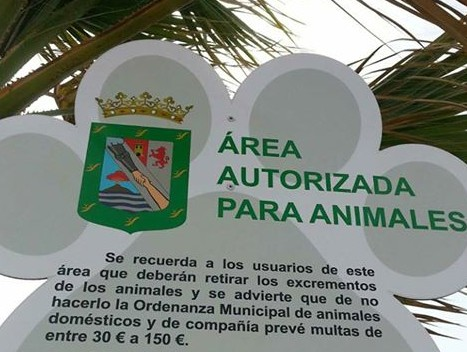 playas para perros en Tenerife
