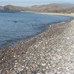 orilla de la playa para perros Cobaticas. Imagen: murciaturistica.es