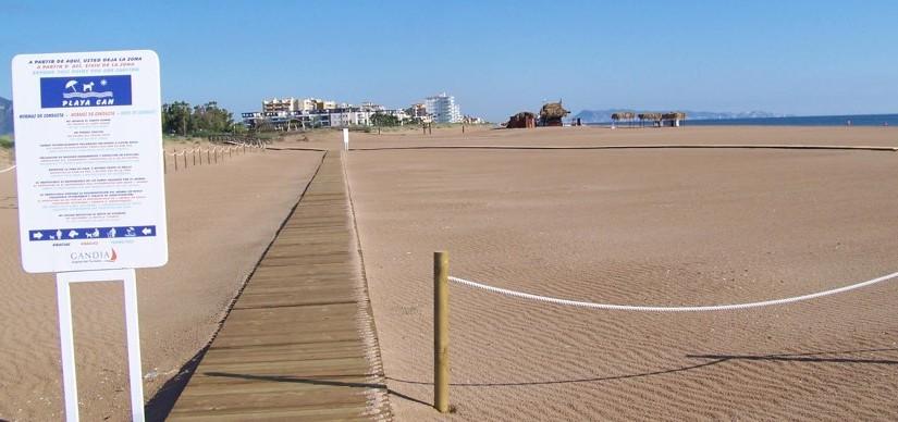 Playas para Perros en Valencia 2016