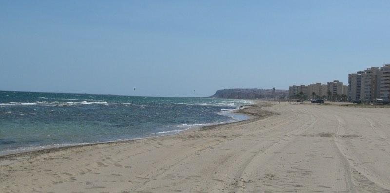 Playas para Perros en Alicante 2016