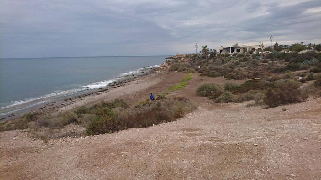 La playa de La Cañada del Negro ha sido la elegida para ser la primera playa para perros en Águilas