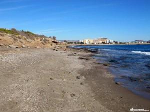 La Playa para perros de Águilas ya está operativa para este verano 2016. Imagen: allyouneedinmurcia.com