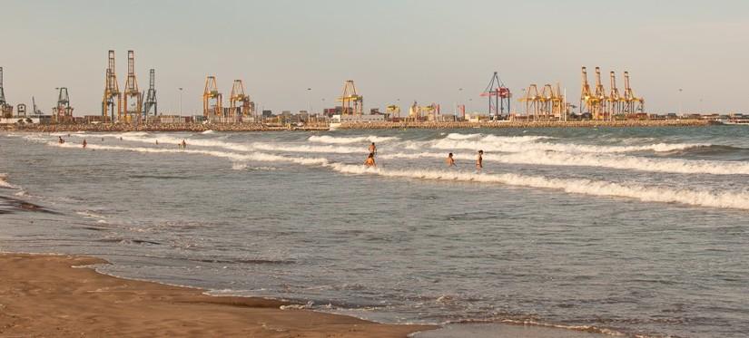 Playa para perros en Pinedo, Valencia