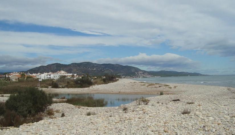 Playa para Perros en Alcossebre
