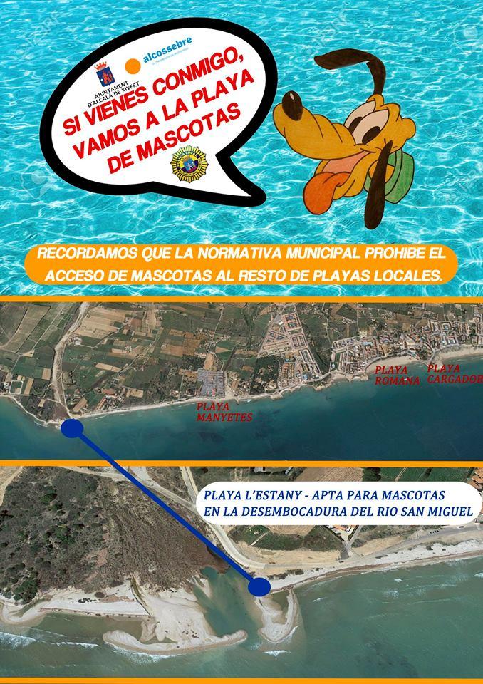 playa-para-perros-alcossebre
